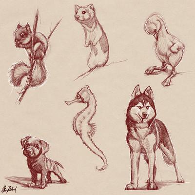 Okan bulbul animal sketches02