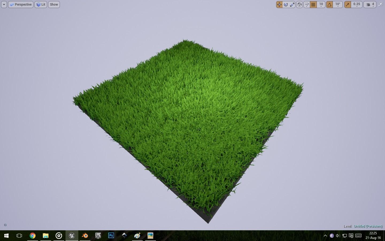 Long Grass Demonstration #1