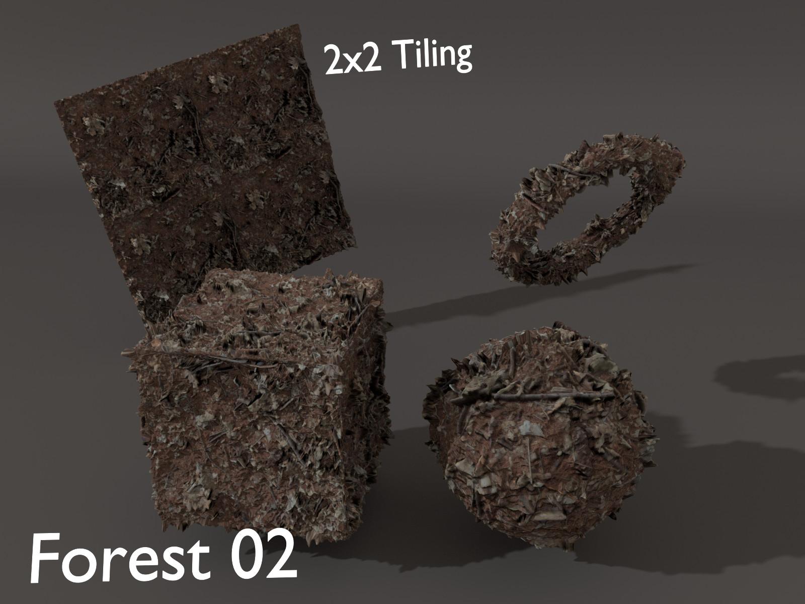 Sieben corgie forest02 p