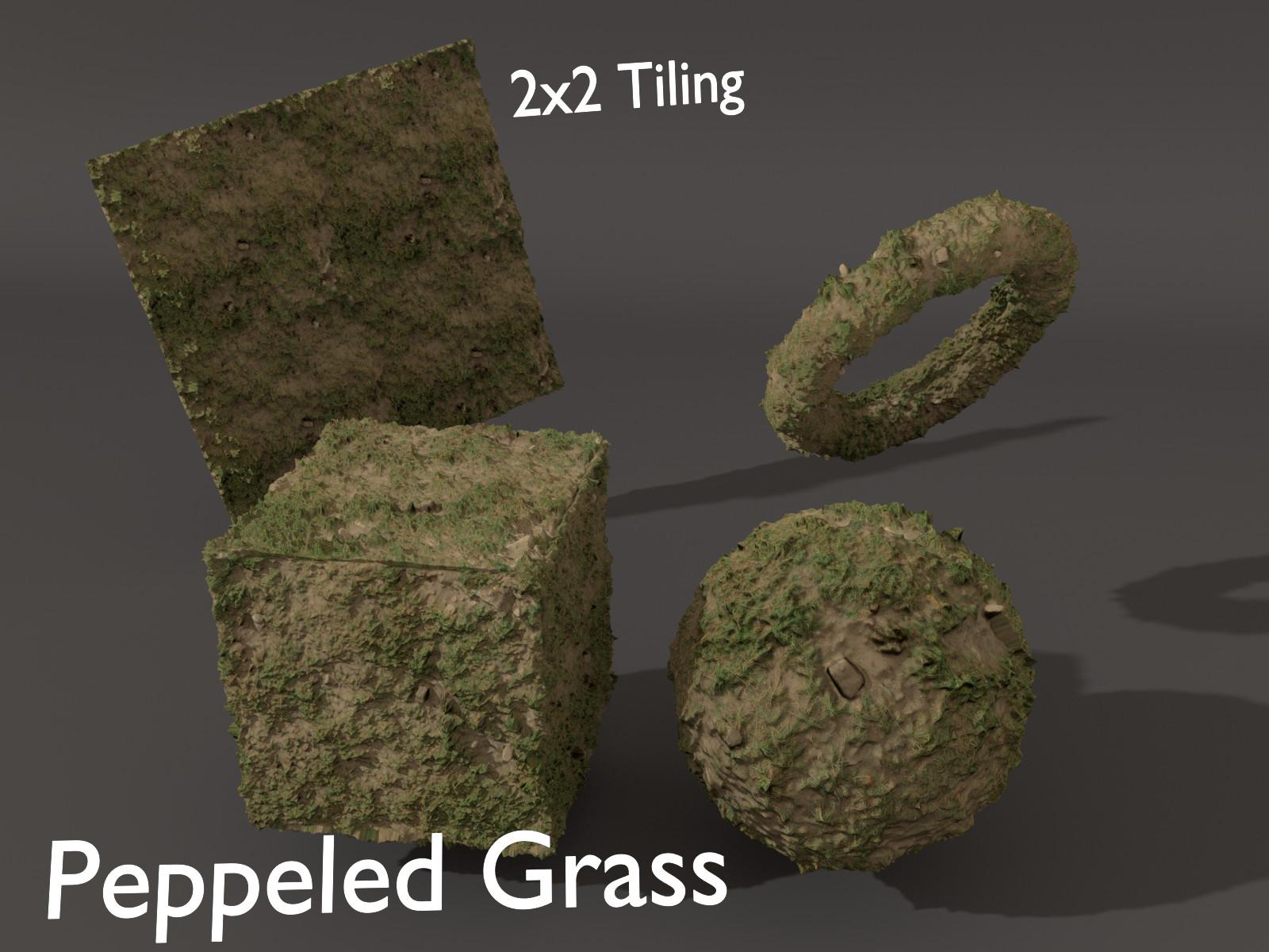 Sieben corgie peppeledgrass p