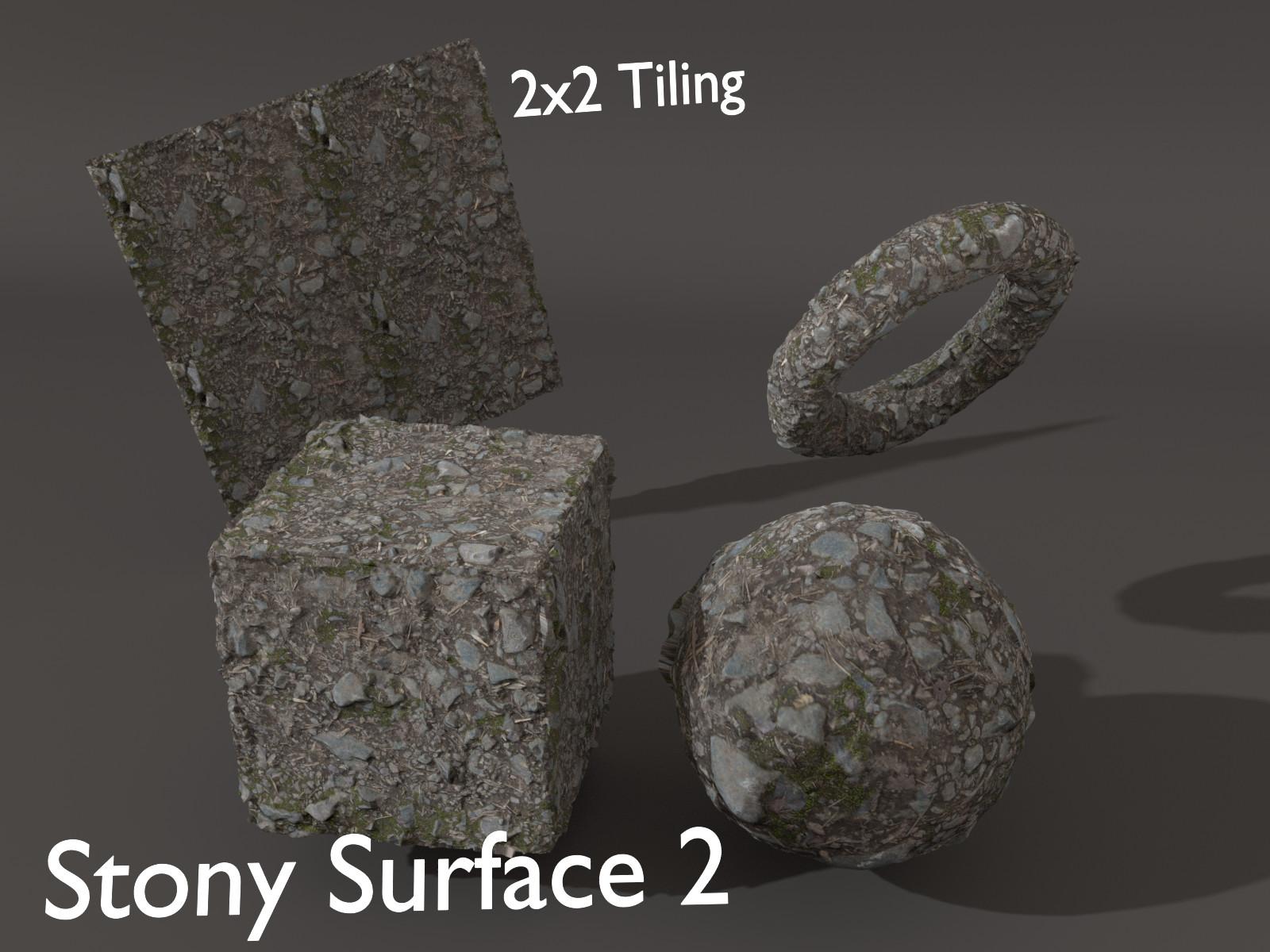 Sieben corgie stonysurface 2 p