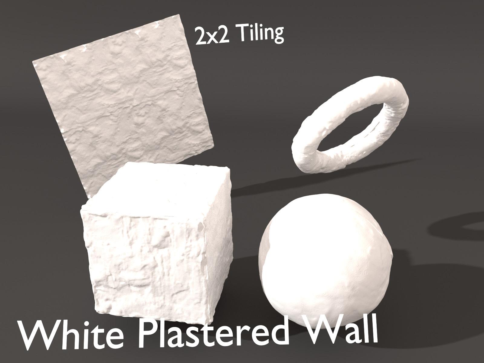 Sieben corgie whiteplasteredwall l