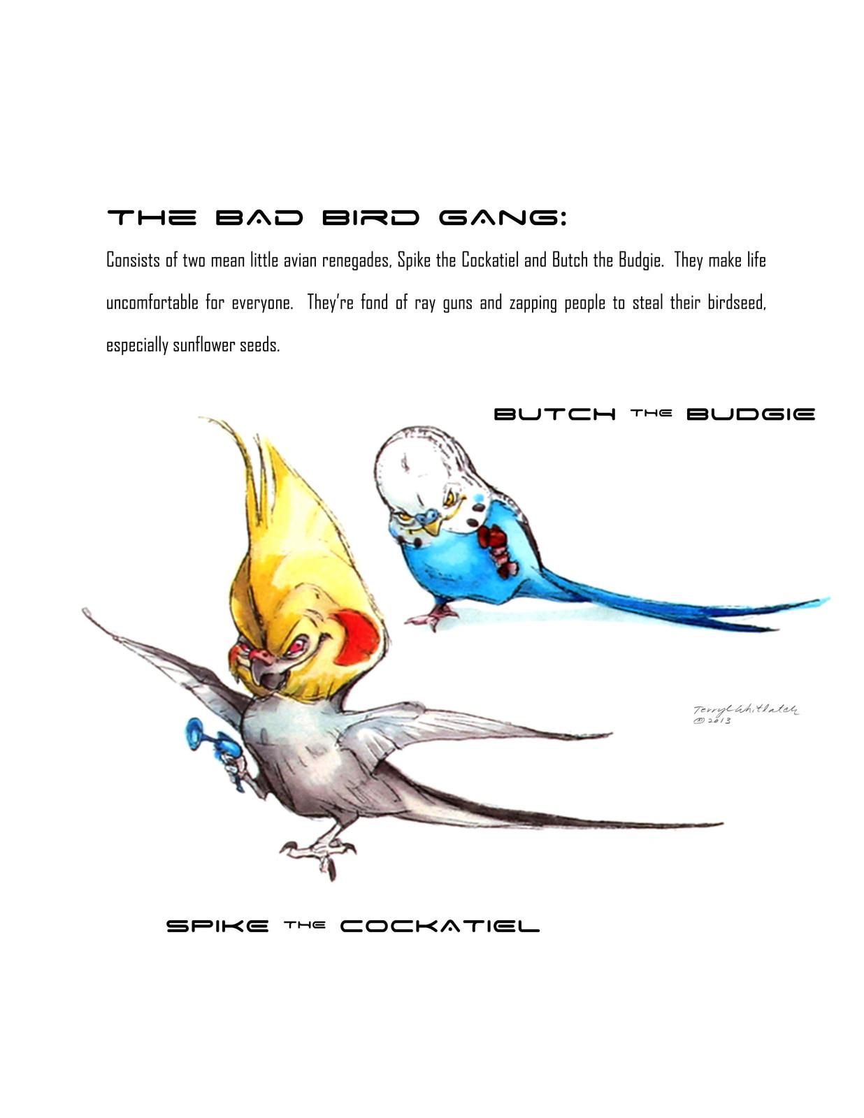 Bad Bird Gang
