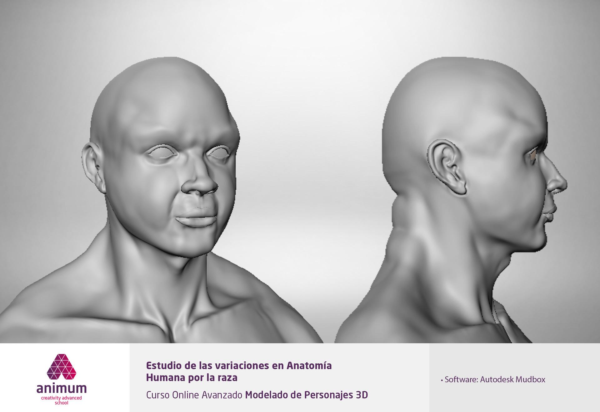 ArtStation - Estudio de las variaciones en la anatomía humana por ...