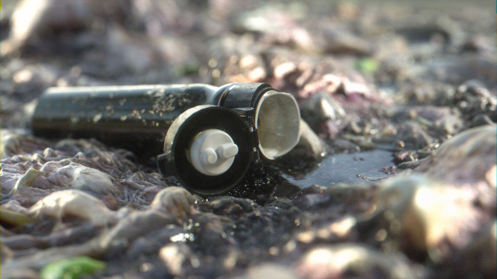 Flask on coastal ground