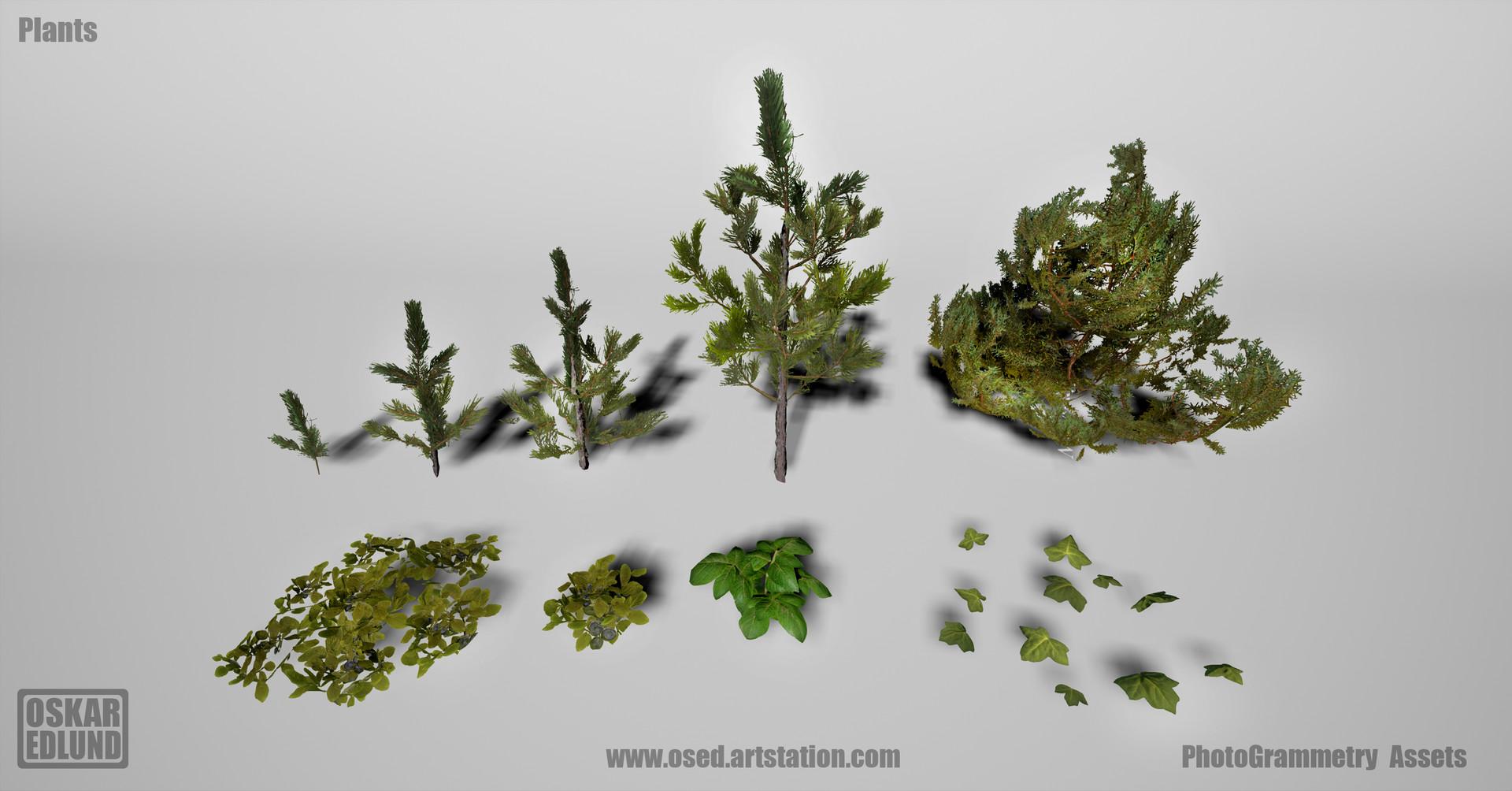 Oskar edlund plants