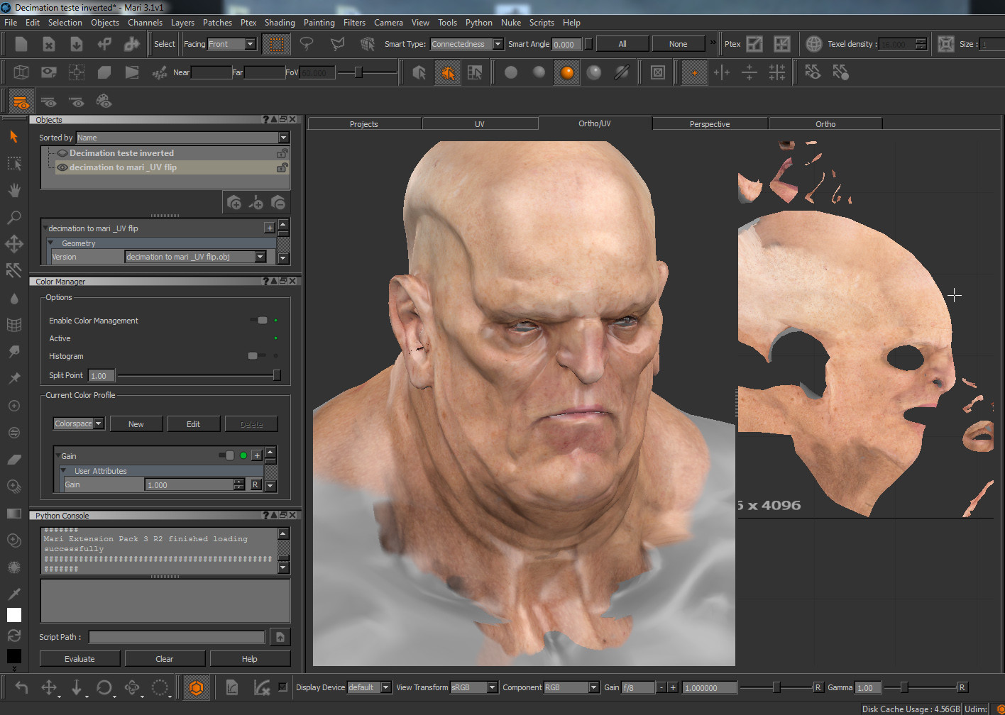 Texturing in Mary
