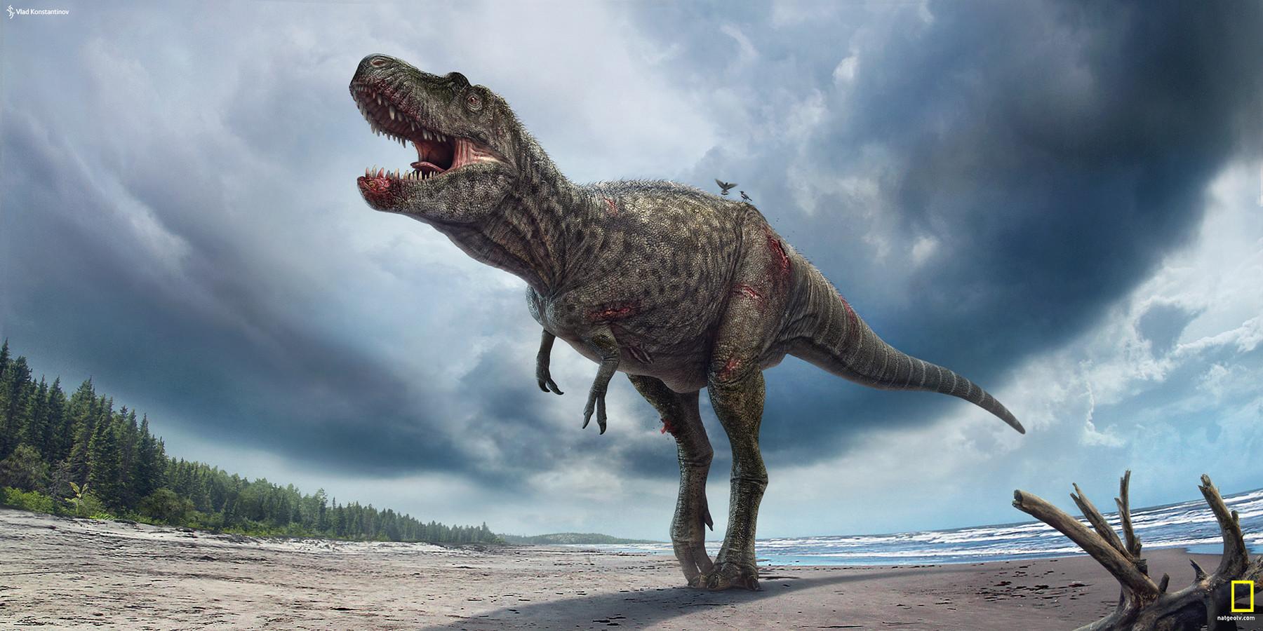 Výsledek obrázku pro gorgosaurus
