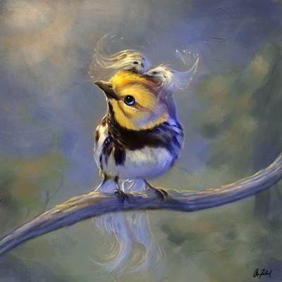Okan bulbul anotherbird02