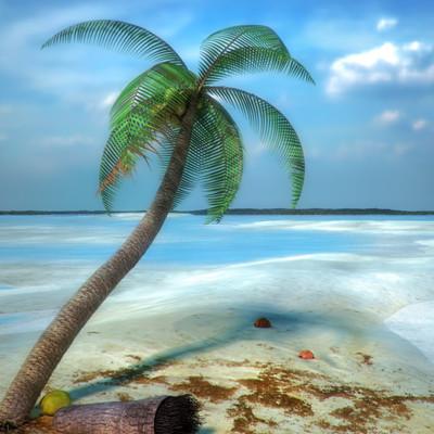 Muhammad sohail anwar tropical beach wide web