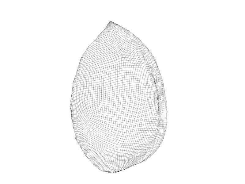 Carlos faustino almond 10k polys 3d model max obj fbx mtl d9a00039 356f 4e5c 950d 92027c2751ca