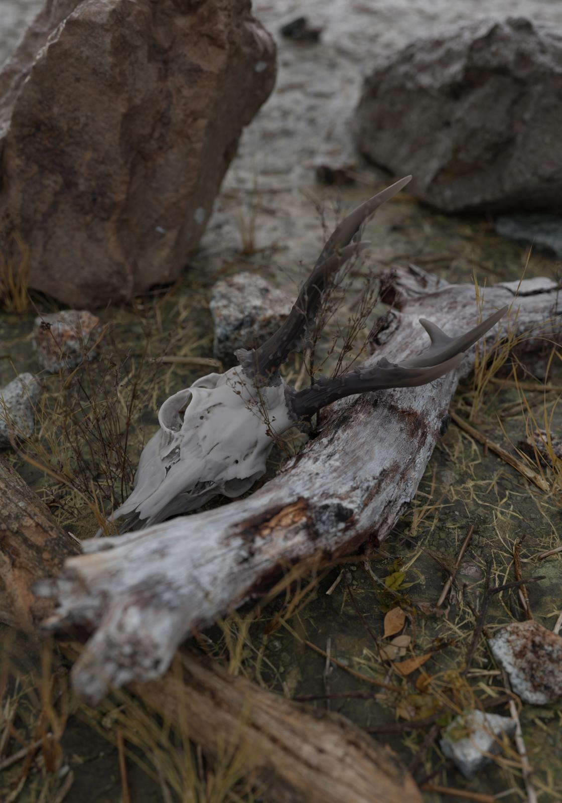 Nature Morte #2