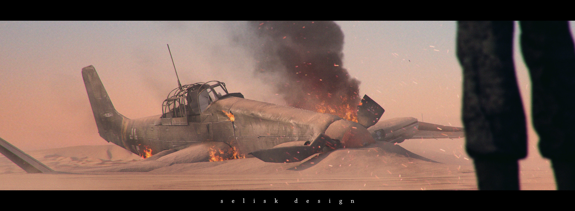 Dimitrije miljus plane crash f