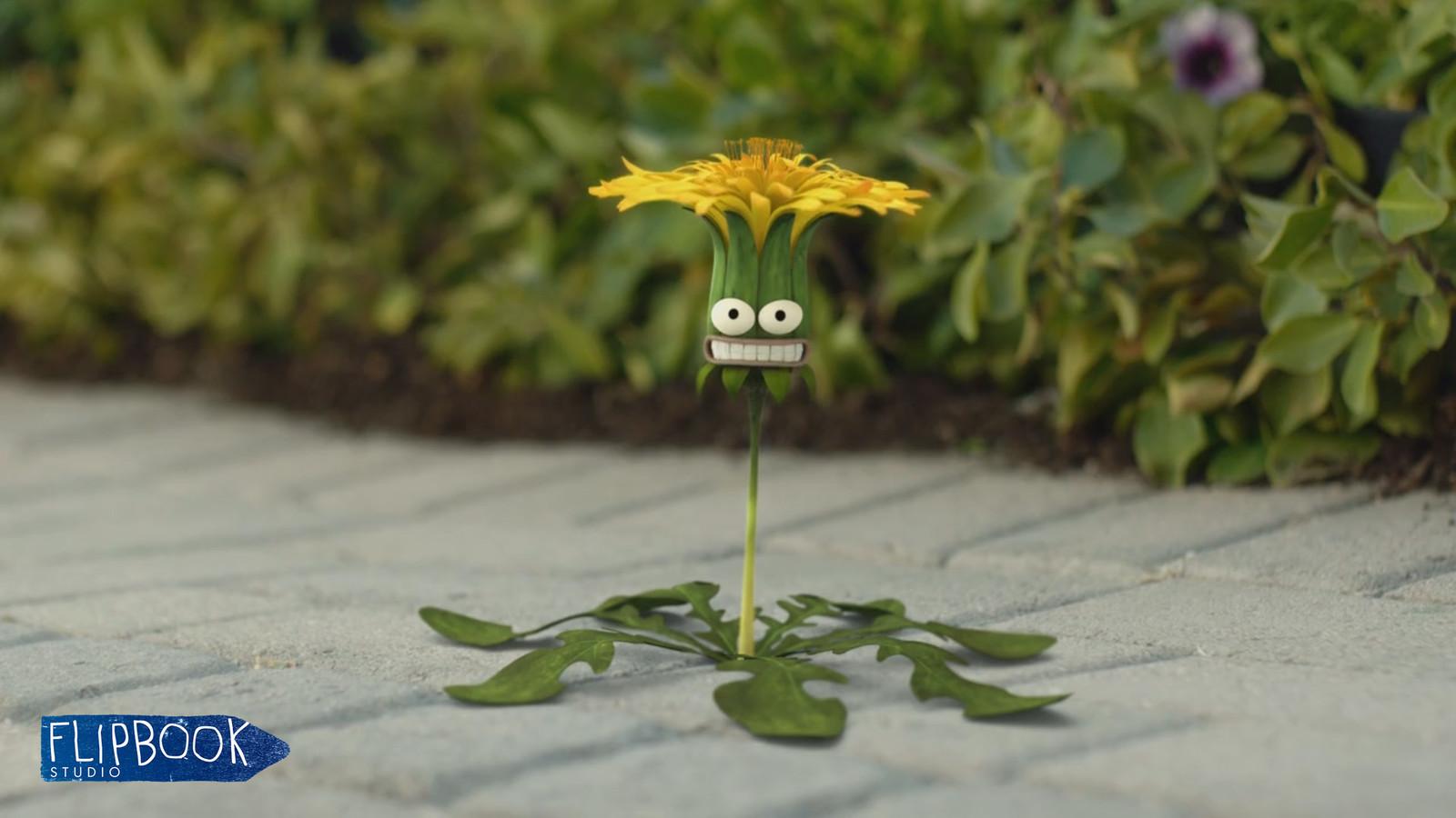 Resolva Weeds