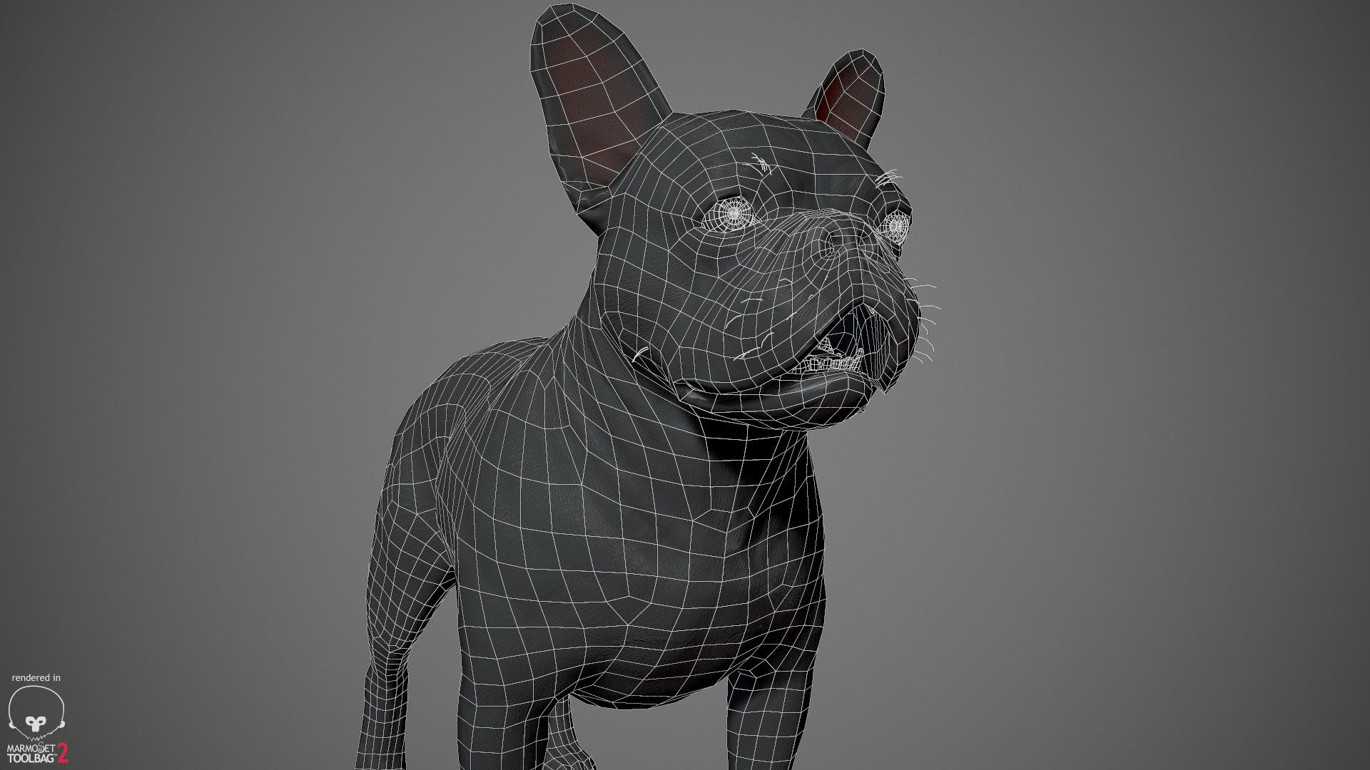 Alex lashko frenchbulldog by alexlashko wireframe 03