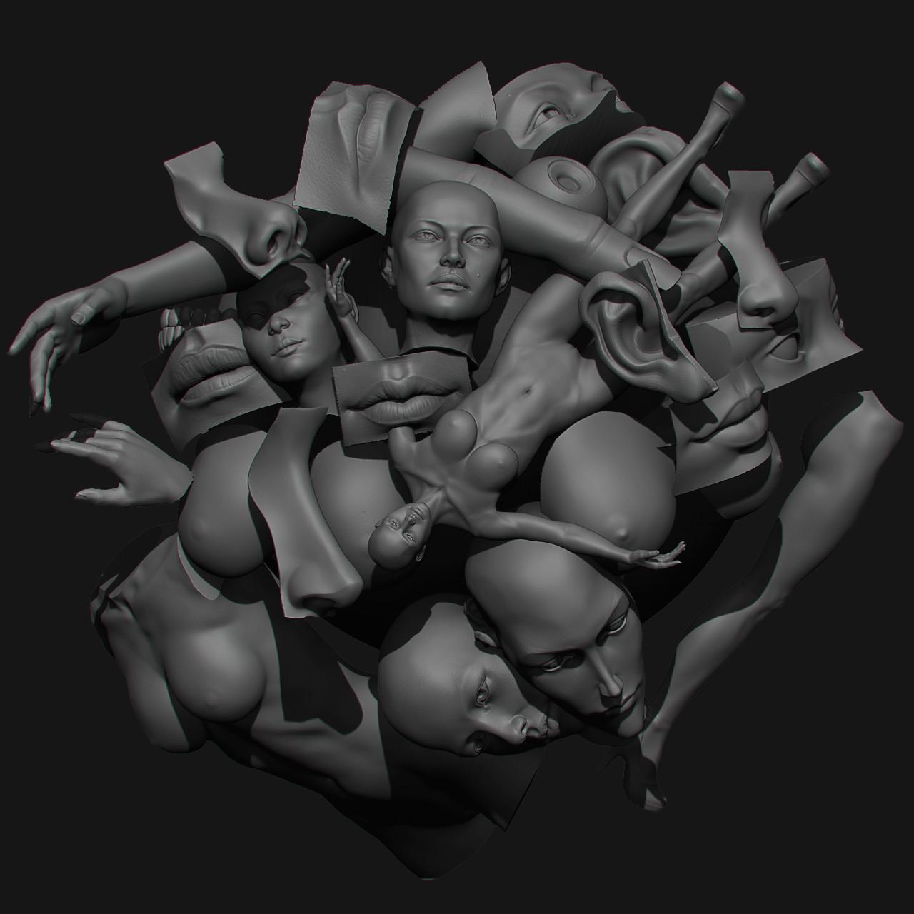 Yuriy romanyk box anatomy pack
