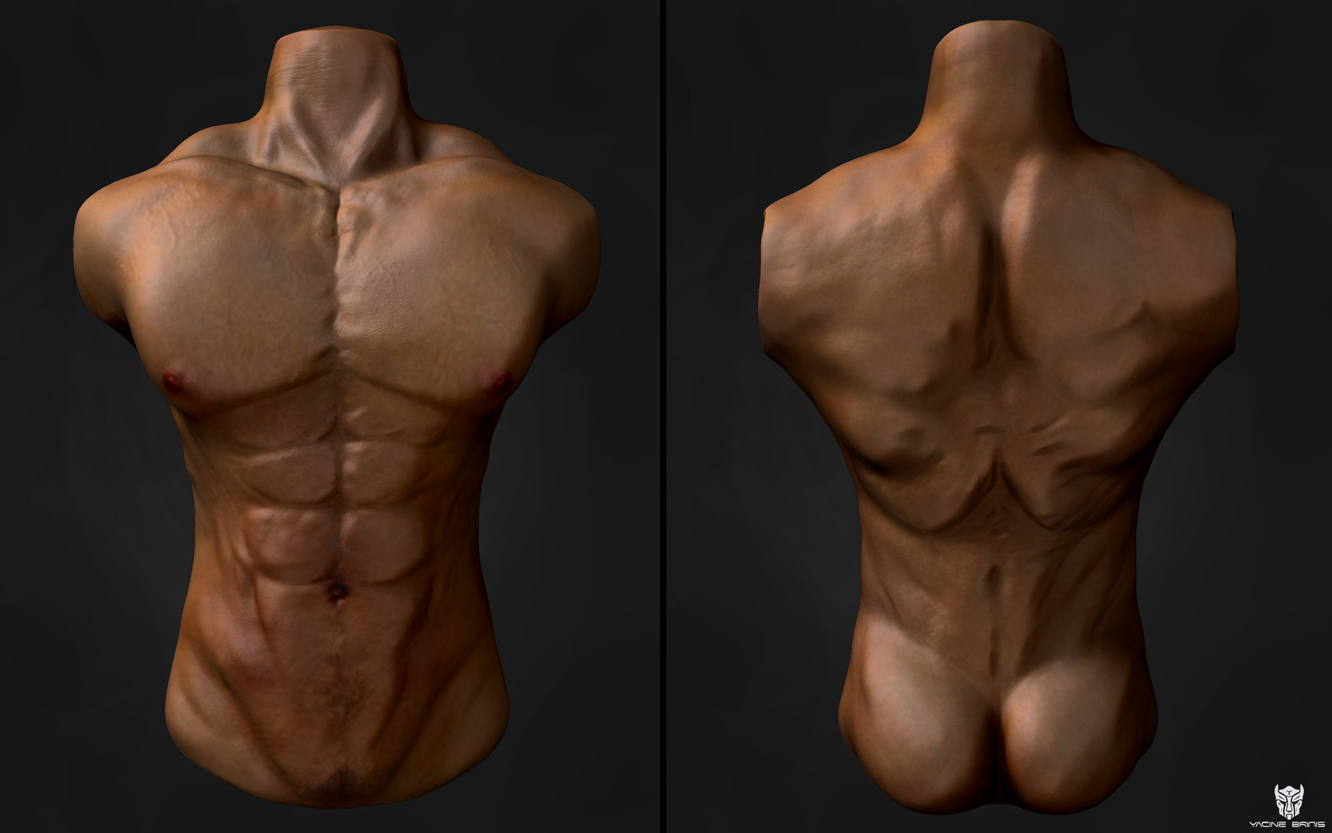 ArtStation - Male Anatomy, BRINIS Yacine