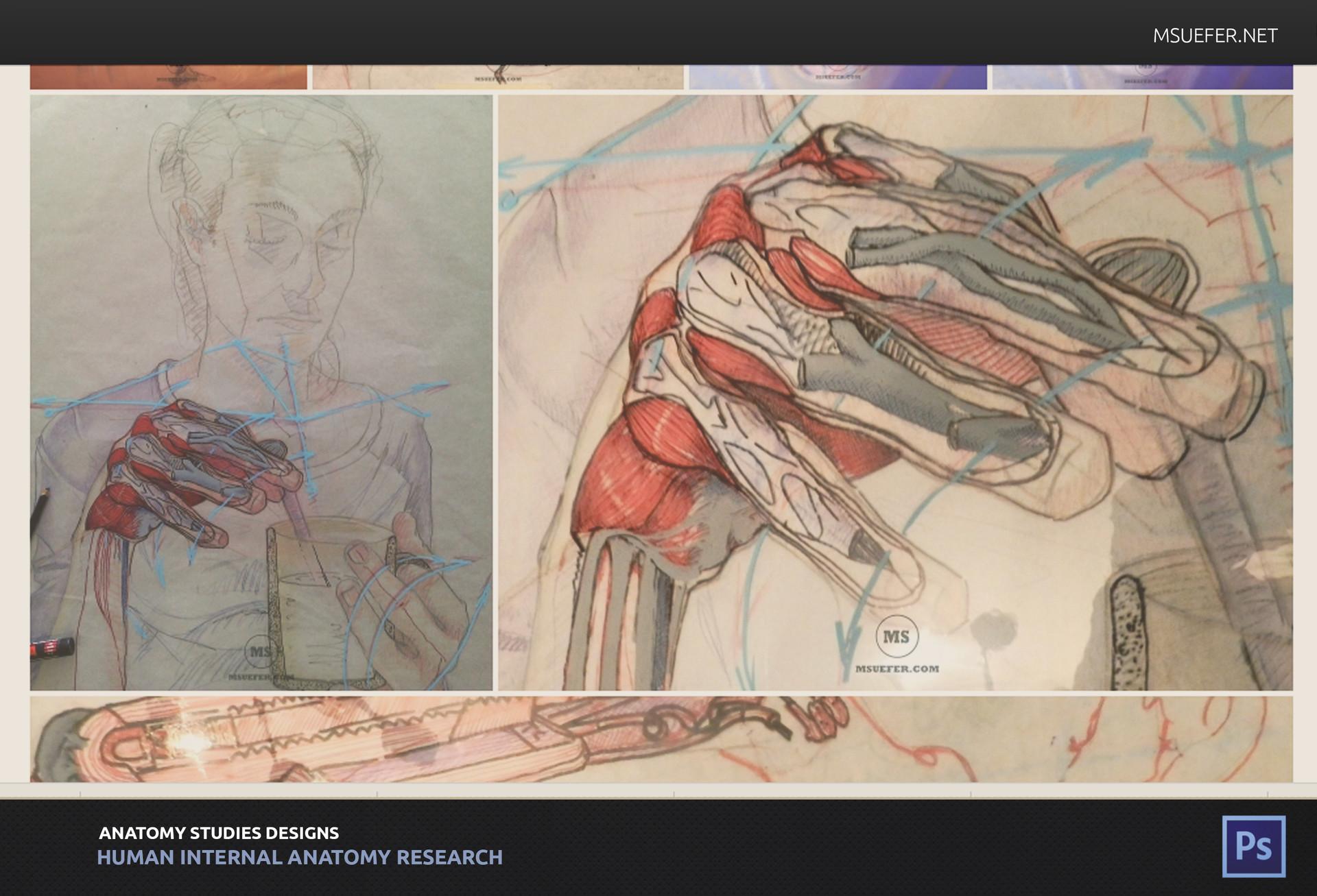ArtStation - Anatomy Studies based on Selfportraits, Marina Suarez