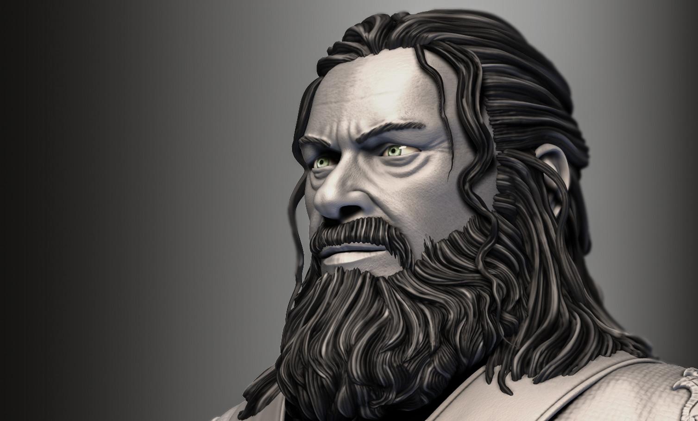 Hans van der zee face