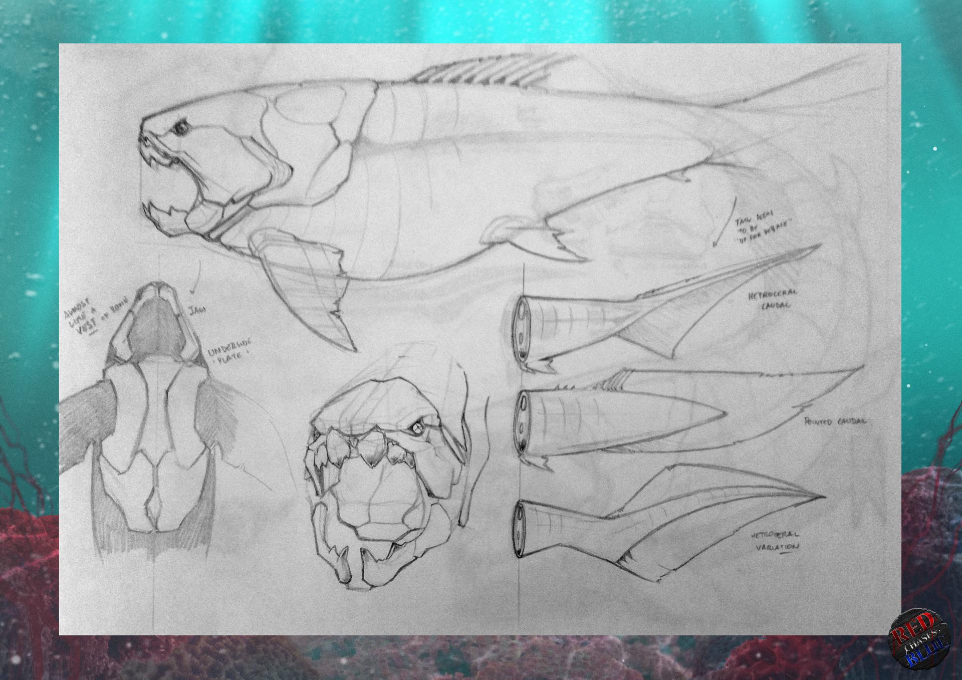 Tudor morris 04 sketches 3