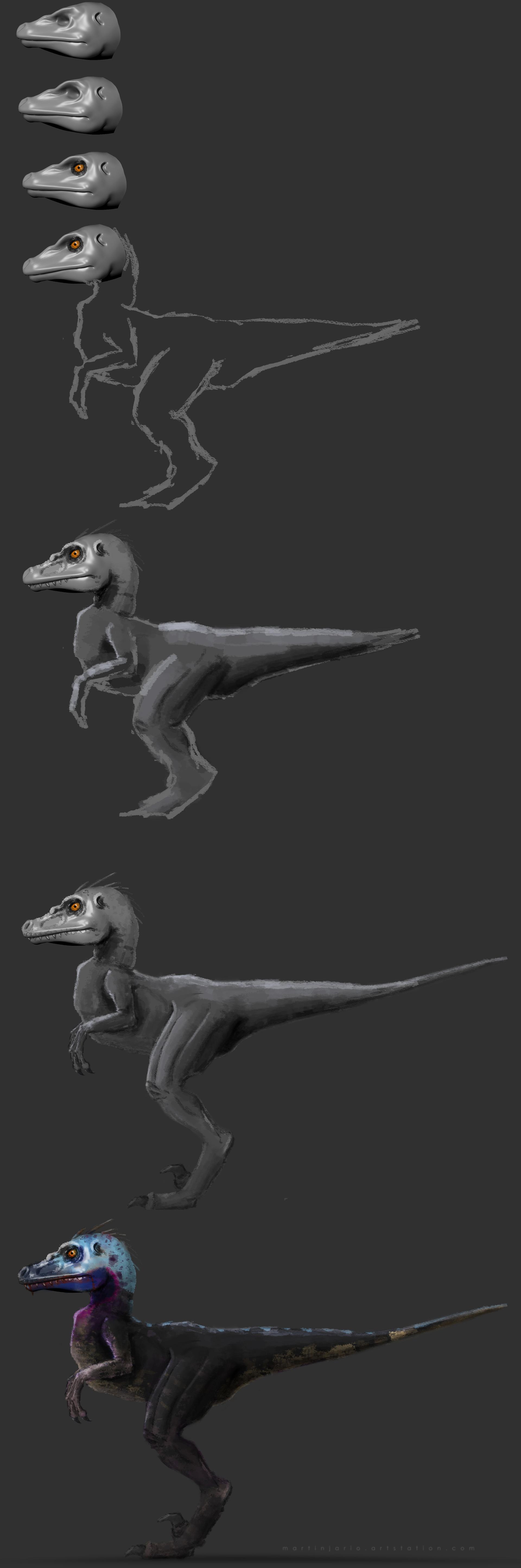 Martin jario martinjario velociraptor process