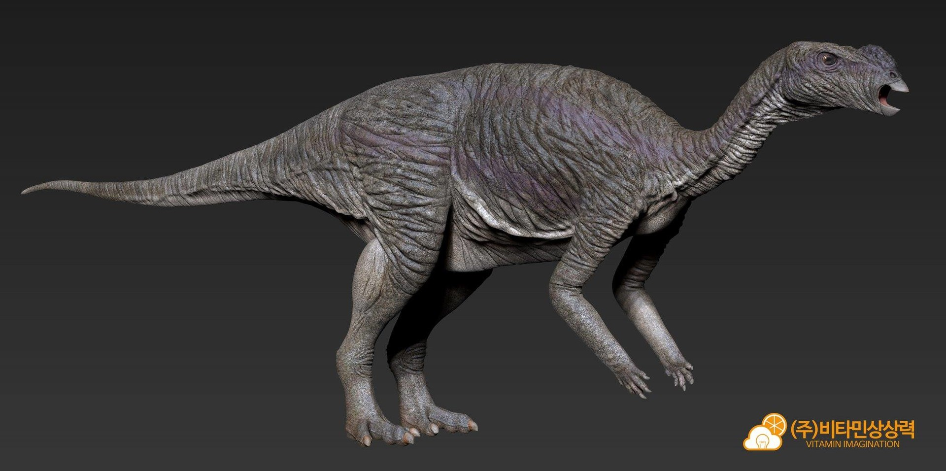 Jin kyeom kim muttaburrasaurus