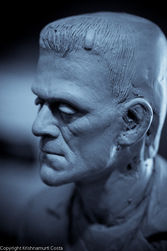 Frank: unfinished clay sculpture
