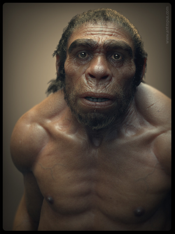Kris costa caveman hai1