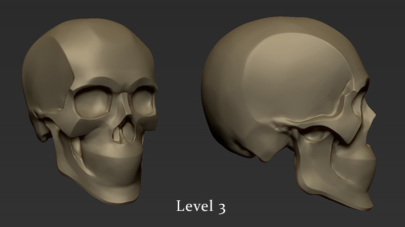 Kris costa skull level3