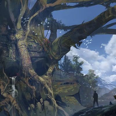 Robin har skulltree