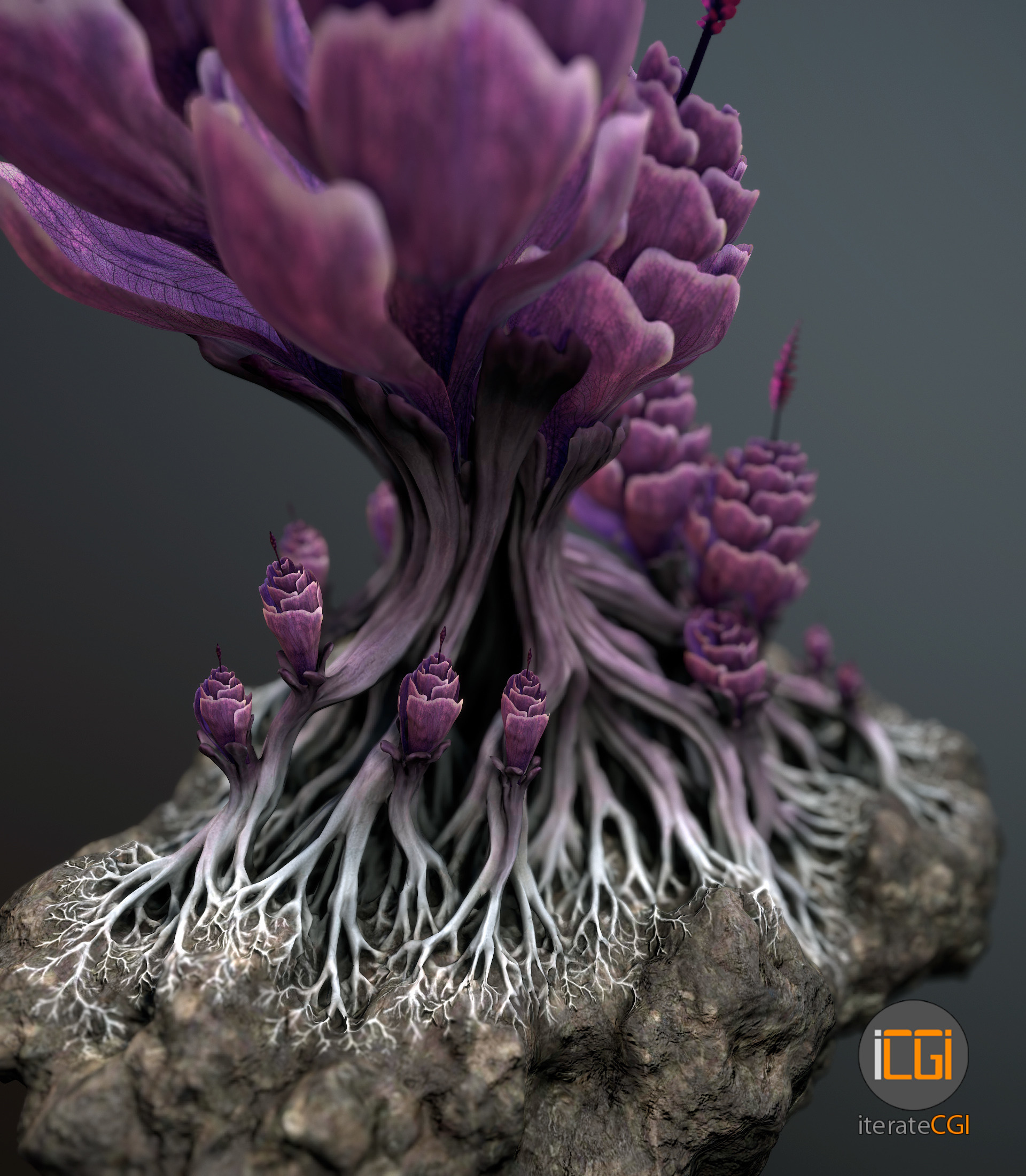 Johan de leenheer alien plantch5