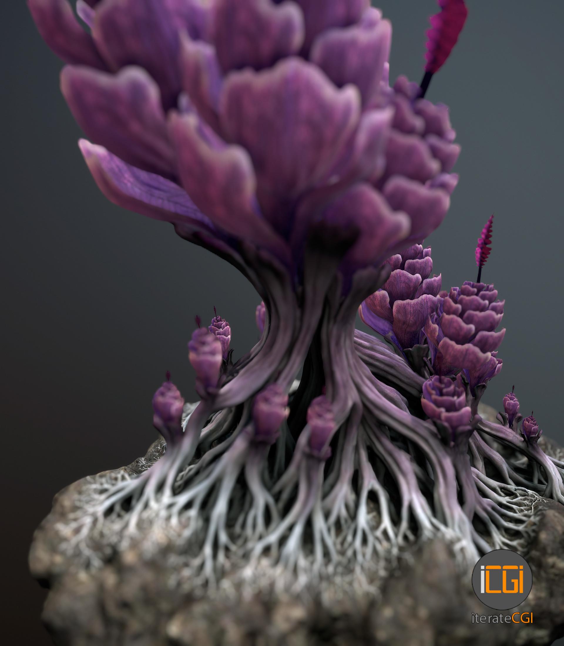 Johan de leenheer alien plantch8
