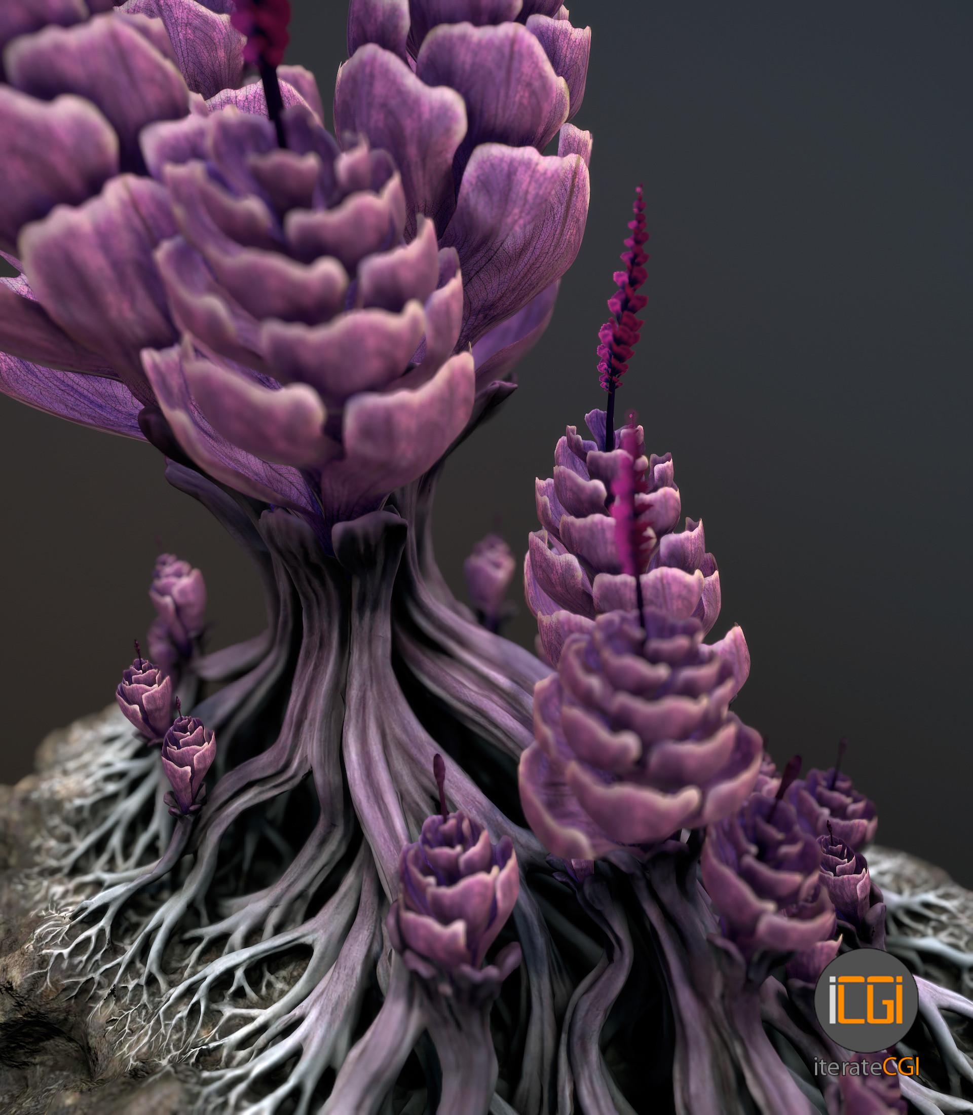 Johan de leenheer alien plantch11