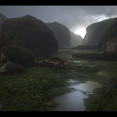 Ricardo guimaraes swampy 03