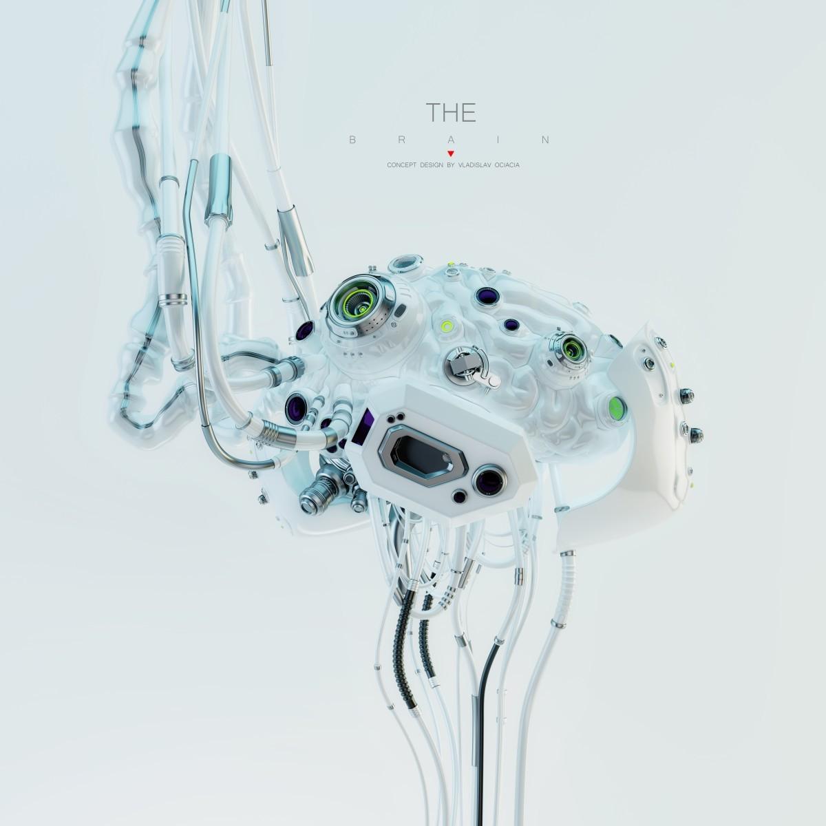 Vladislav ociacia robotic brain 13