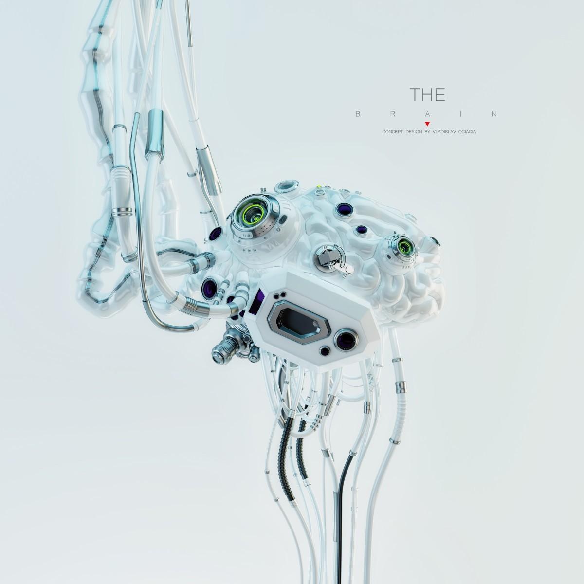 Vladislav ociacia robotic brain 11