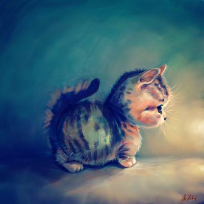 Okan bulbul kitten profile04