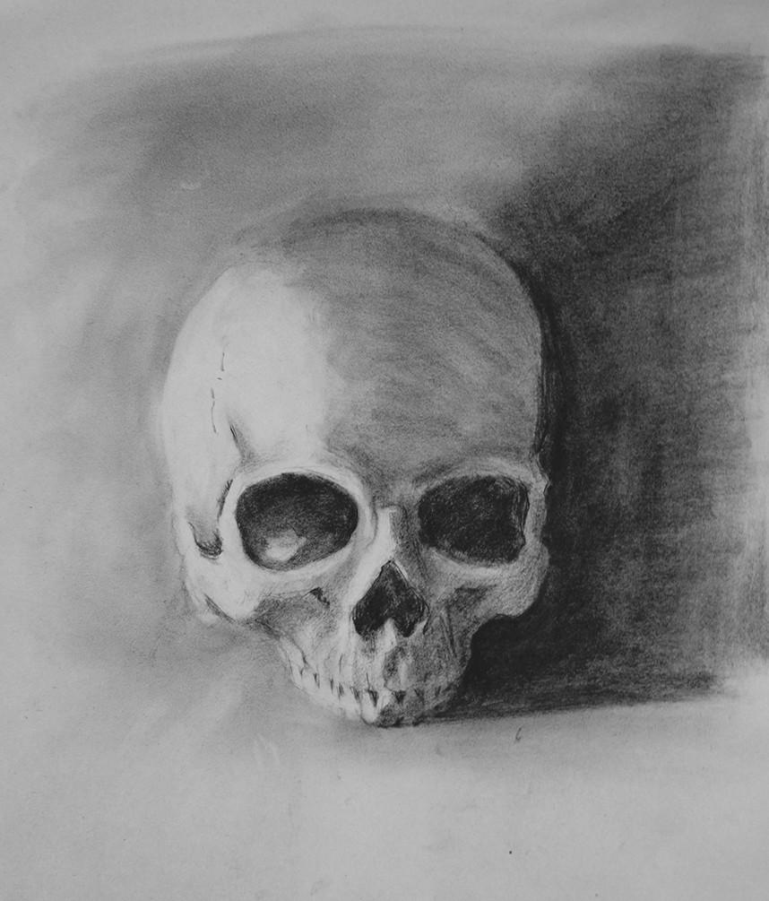 Iain gillespie skull 02