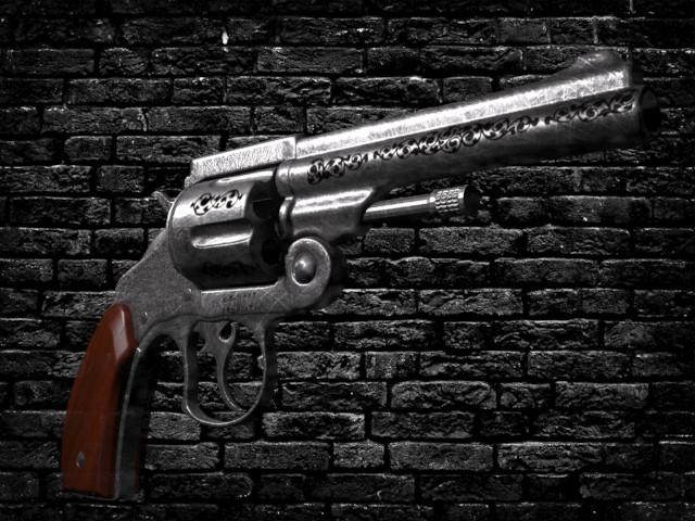 Petar doychev revolver 5