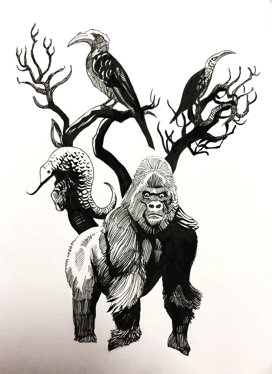 Hugo puzzuoli gorille small02