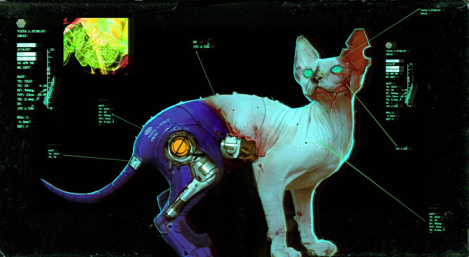 Dan baker cat 1
