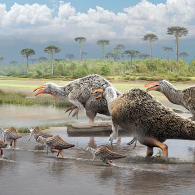 Damir g martin deinocheirus illustration sml