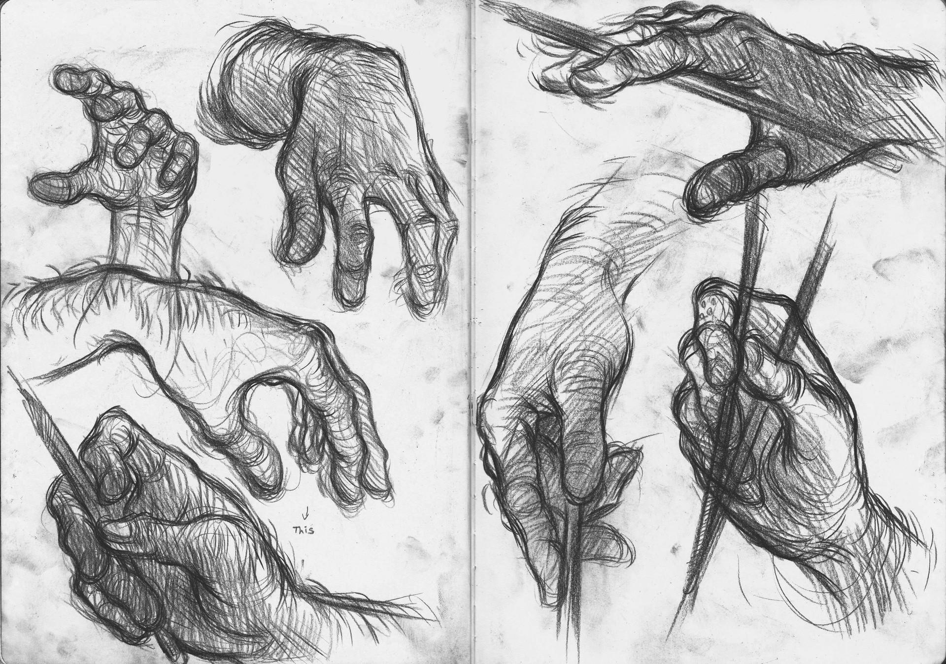 Sahil trivedi hands