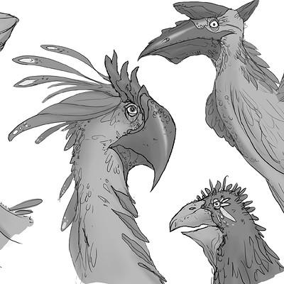Danny kundzinsh bird design 2