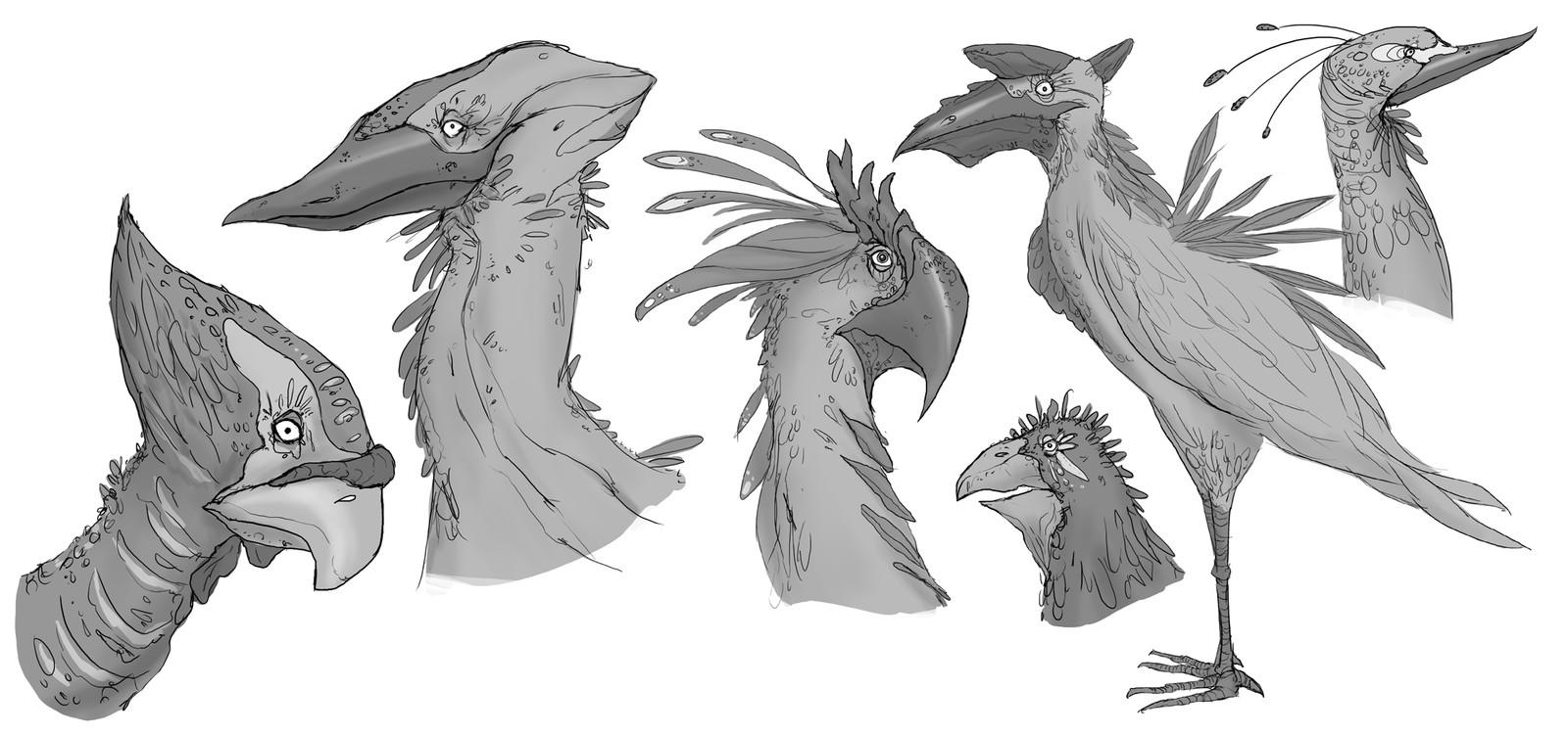 Fantasy bird concepts
