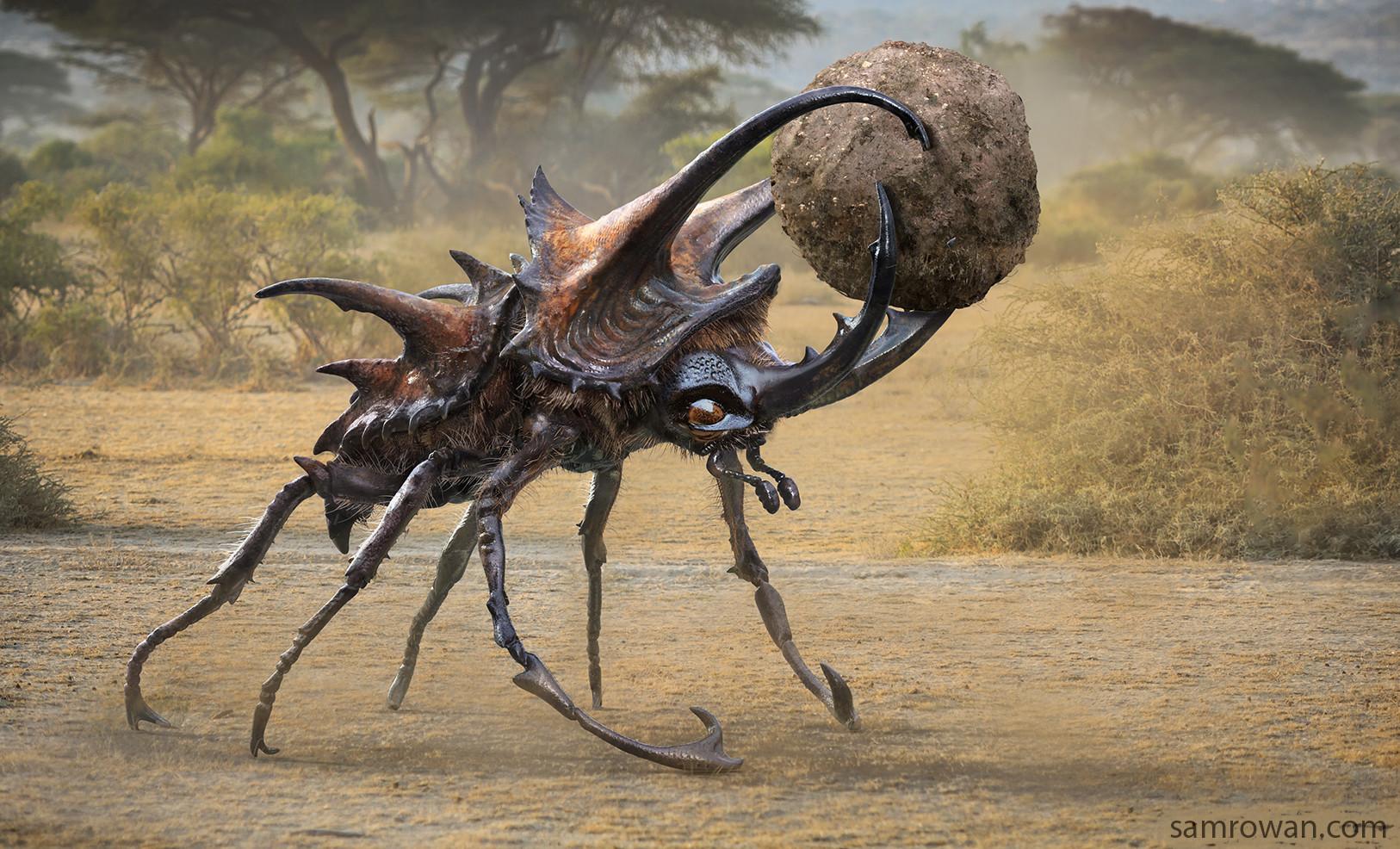 [Image: sam-rowan-boswell-beetle-eye-v009-002-sr.jpg?1481045329]