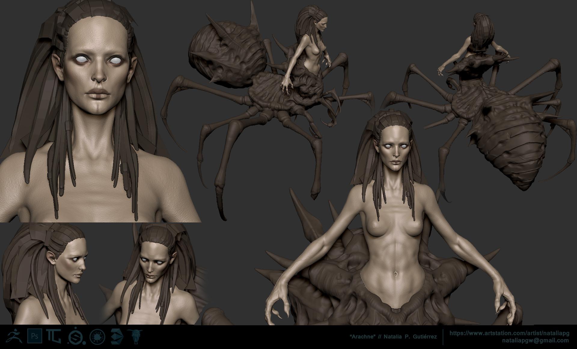 Natalia p gutierrez arachneview 11