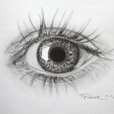 Taran fiddler eye sketch1