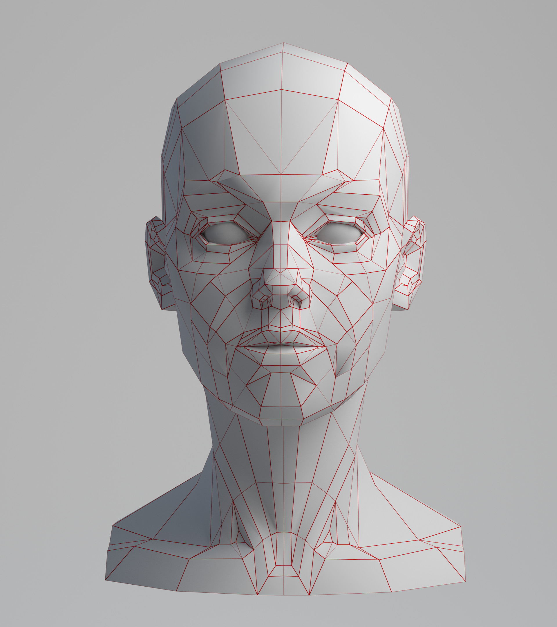 Face anatomy for artists