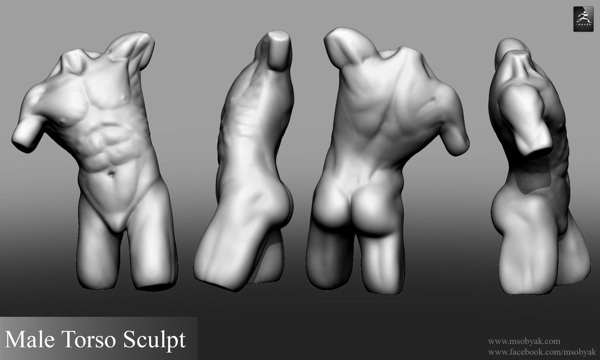 Michael Sobyak Male Torso Anatomy Sculpt